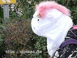 USJクリスマス簡単仮装に被り物
